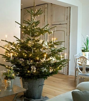 Christmas tree styles to suit your home