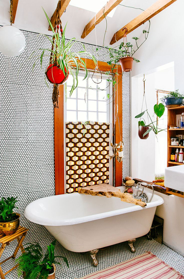 hanging plants in a bathroom