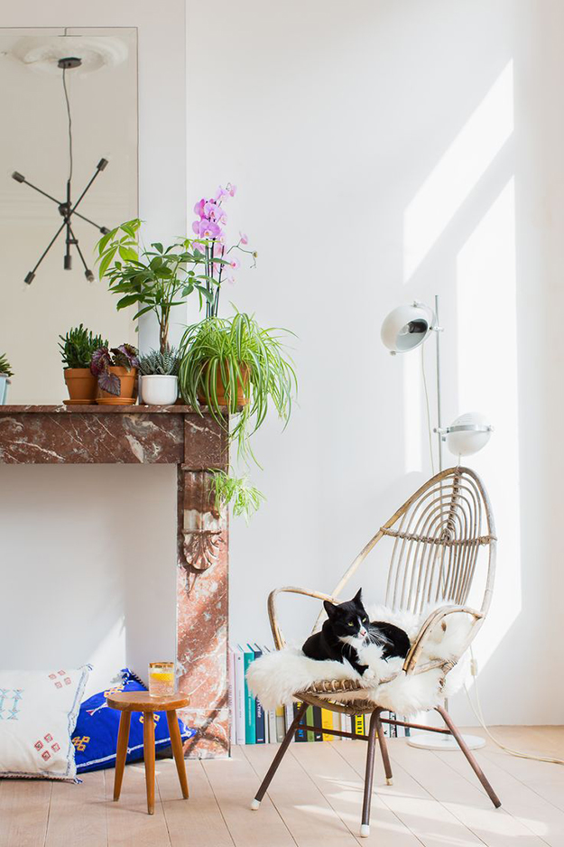 light airy living room with plants