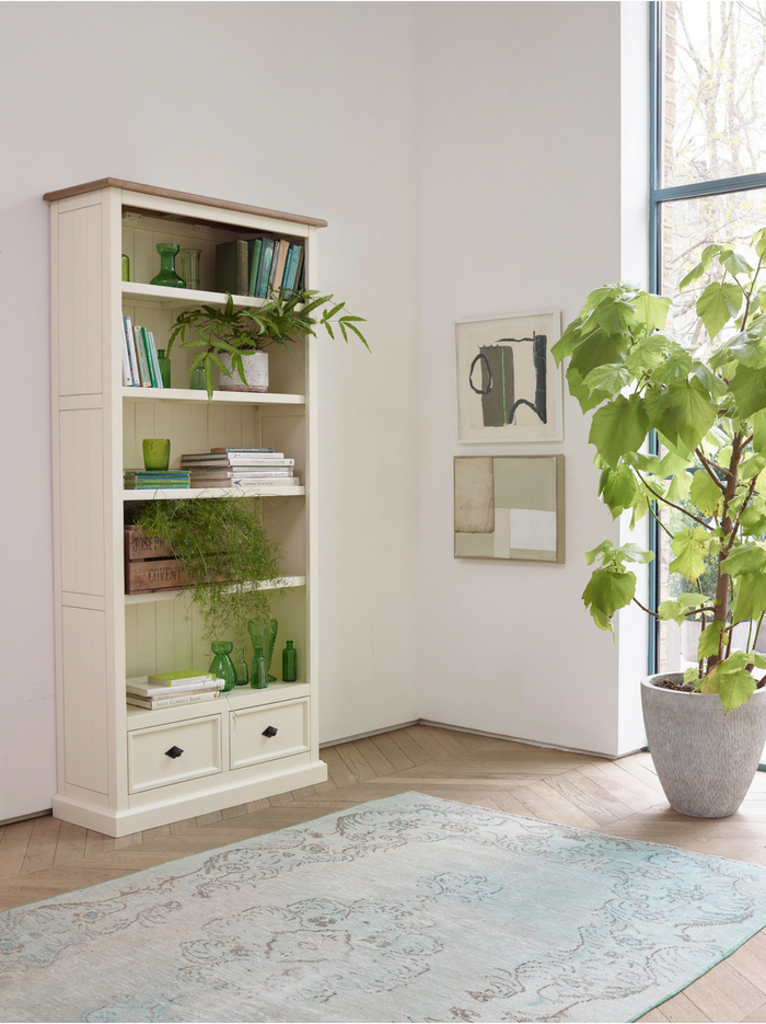 Shutter Bookcase with plants