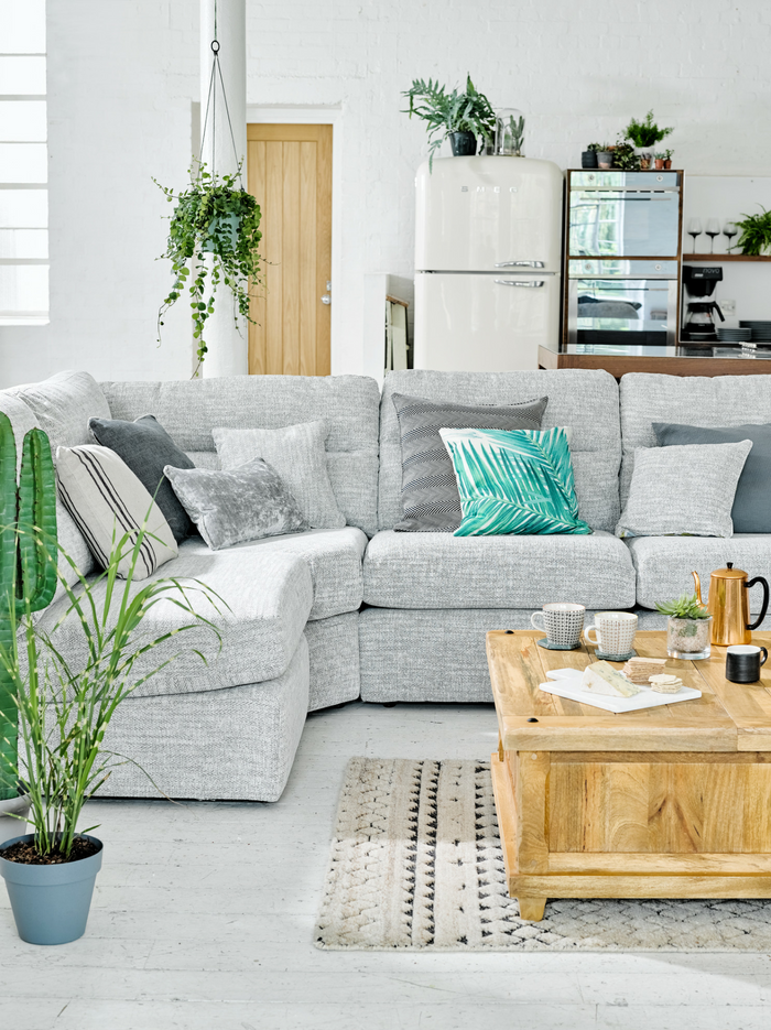 Grey themed living room with plants