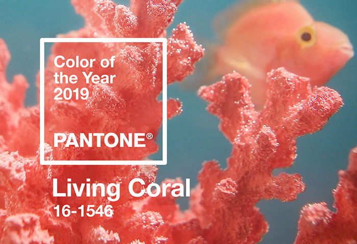 Living Coral Pantone Swatch
