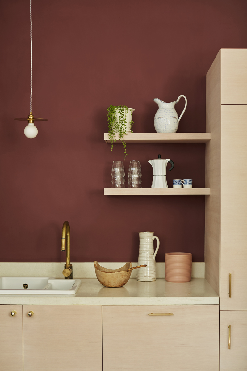 Earthborn-Paints-Kitchen_Ladybug_26_RT