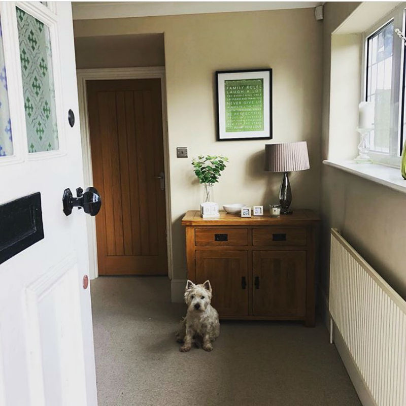 sideboard in cosy living room with westie dog