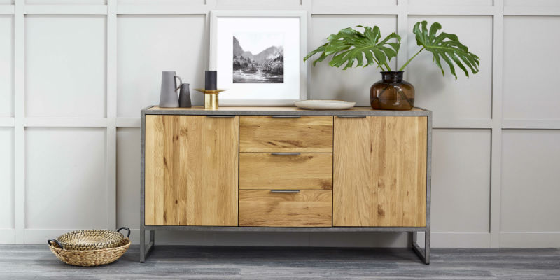 Industrial Style large sideboard with a frame and house plant on top
