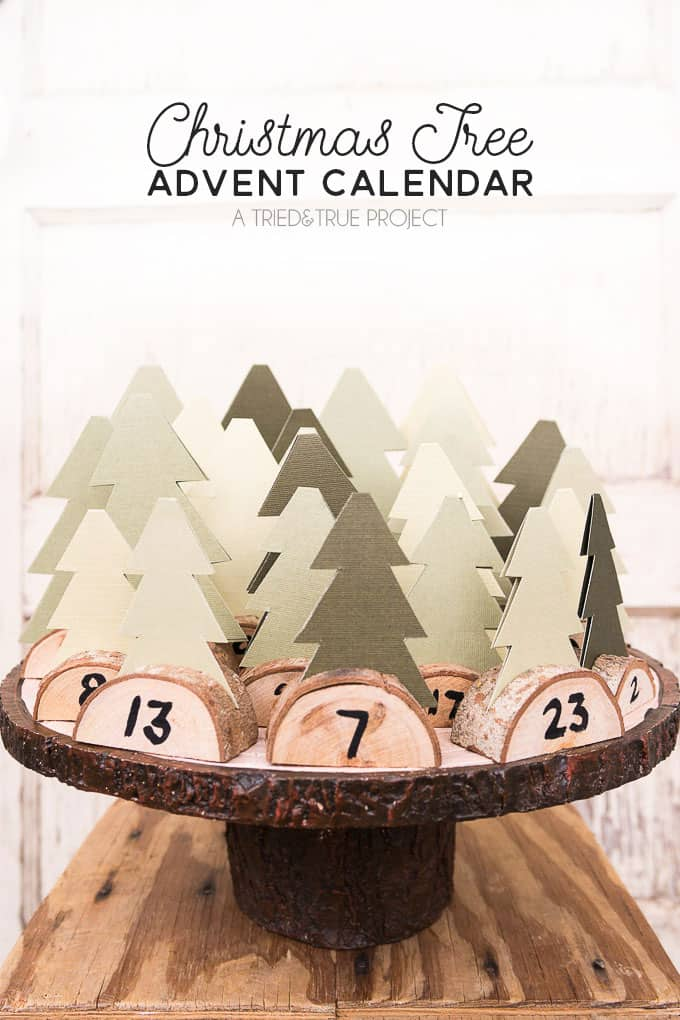 Mini Forest Activity Advent Calendar