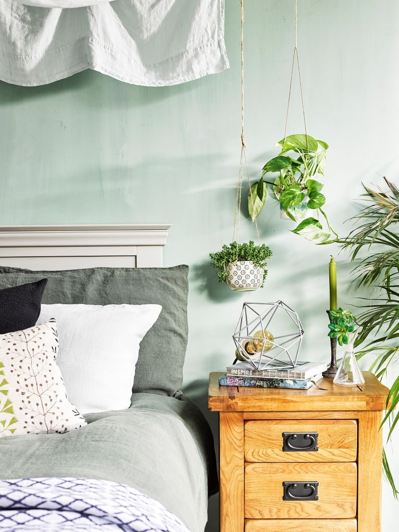 Hanging plants over oak bedside table
